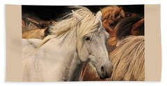 White Icelandic Horse Beach Towel