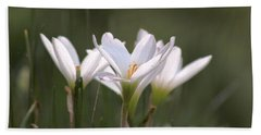 Beach Towel featuring the photograph White Lily - Symbol Of Purity by Ramabhadran Thirupattur