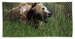 Wild Life Safari Bear Beach Sheet