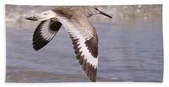 Willet In Flight Beach Sheet