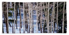 Beach Sheet featuring the photograph Winter Aspens by Colleen Coccia