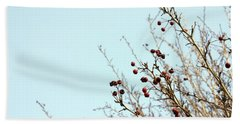Winter's End Beach Sheet by Cindy Garber Iverson