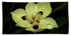 Yellow Iris With Rain Drops Beach Sheet