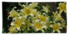 Yellow Oriental Stargazer Lilies Beach Towel by Tom Wurl