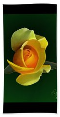 Yellow Rose Beach Towel by Rand Herron