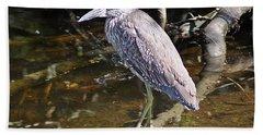 Yelow-crowned Night Heron 1 Beach Towel by Joe Faherty