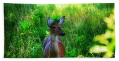 Young Deer Beach Towel by Peggy Franz