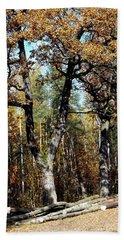 Autumn In Forest Beach Sheet by Henryk Gorecki