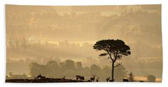 Autumn Morning, Strathglass Beach Towel