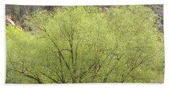 Tree Ute Pass Hwy 24 Cos Co Beach Sheet
