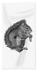 058 Sweeney The Squirrel Beach Sheet by Abbey Noelle
