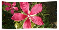Hibiscus Coccineus Beach Sheet