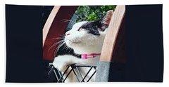 Koneko Means A Kitten Beach Sheet