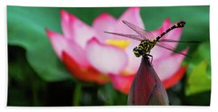 A Dragonfly On Lotus Flower Beach Sheet
