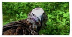 A Happy Vulture Beach Towel