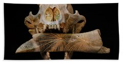 Beach Towel featuring the photograph A Taste For Bones by Ronda Broatch