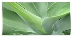 Agave Attenuata Abstract Beach Towel