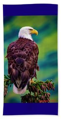 Alaska Bald Eagle Beach Towel