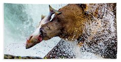 Beach Towel featuring the photograph Alaska Brown Bear by Norman Hall
