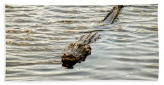 Alligator In Lake Alice Beach Towel