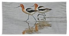 American Avocets  Beach Sheet by Tom Janca