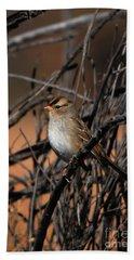 American Tree Sparrow Beach Sheet