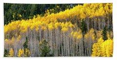 Aspen Trees In Fall Color Beach Towel