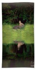 Dusk Bunny Beach Sheet