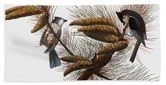 Audubon: Titmouse Beach Towel