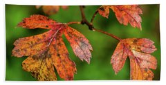 Beach Towel featuring the photograph Autumn Leaves by Nick Bywater