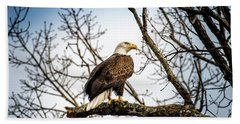 Bald Eagle Majesty Beach Towel