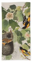 Baltimore Oriole Beach Sheet by John James Audubon