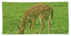 Beach Towel featuring the photograph Bambi by Rick Friedle