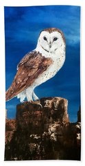 Barn Owl Beach Sheet by Jean Walker
