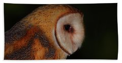 Barn Owl Profile Beach Towel