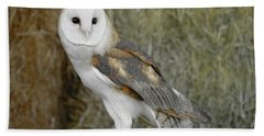 Barn Owl On Hay Beach Towel