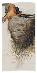 Barn Swallow Beach Towel by John James Audubon