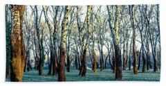 Beach Towel featuring the photograph Birch Tree Woodland by Lana Enderle