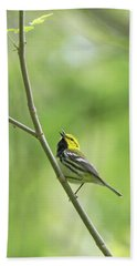 Black-throated Green Warbler Beach Towel
