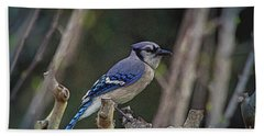 Blue Bird Of Happiness Beach Towel