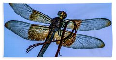 Blue Dragonfly Beach Towel by Toma Caul