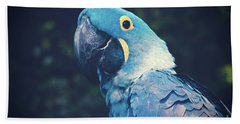 Blue Hyacinth Macaw Beach Towel by Sharon Mau