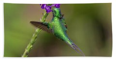 Booted Racket-tail Beach Towel