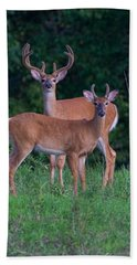 Buck Father And Son Beach Towel