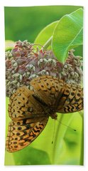 Butterfly On Wild Flower Beach Towel