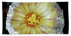 Cactus Flower 2 Beach Towel by Selena Boron