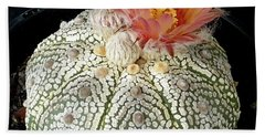 Cactus Flower 4 Beach Towel by Selena Boron