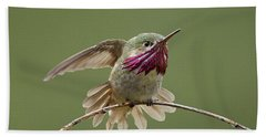 Calliope Hummingbird Beach Towel