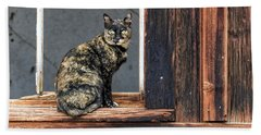 Cat In A Window Beach Sheet