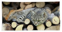 Beach Towel featuring the photograph Cat Resting On A Heap Of Logs by Michal Boubin